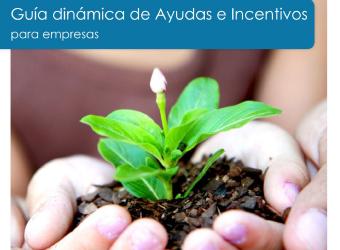 Guía Dinámica de Ayudas e Incentivos para empresas.