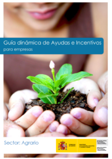 Guía Dinámica de Ayudas e Incentivos existentes para empresas.