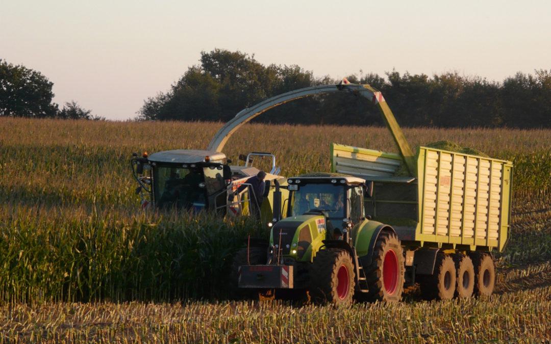 LAS DEMANDAS DE LA SOCIEDAD MARCARÁN LA EVOLUCIÓN DE LOS MERCADOS AGRARIOS EN LA PRÓXIMA DÉCADA