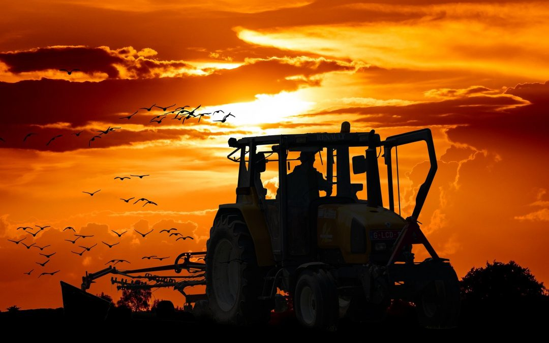 LA AGRICULTURA RESISTE A LA COVID-19 Y ES EL SECTOR QUE MENOS EMPLEO DESTRUYE EN MARZO