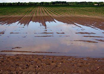 ÚLTIMO MES PARA SOLICITAR LAS AYUDAS DE LA DANA PARA AGRICULTORES CON Y SIN SEGURO