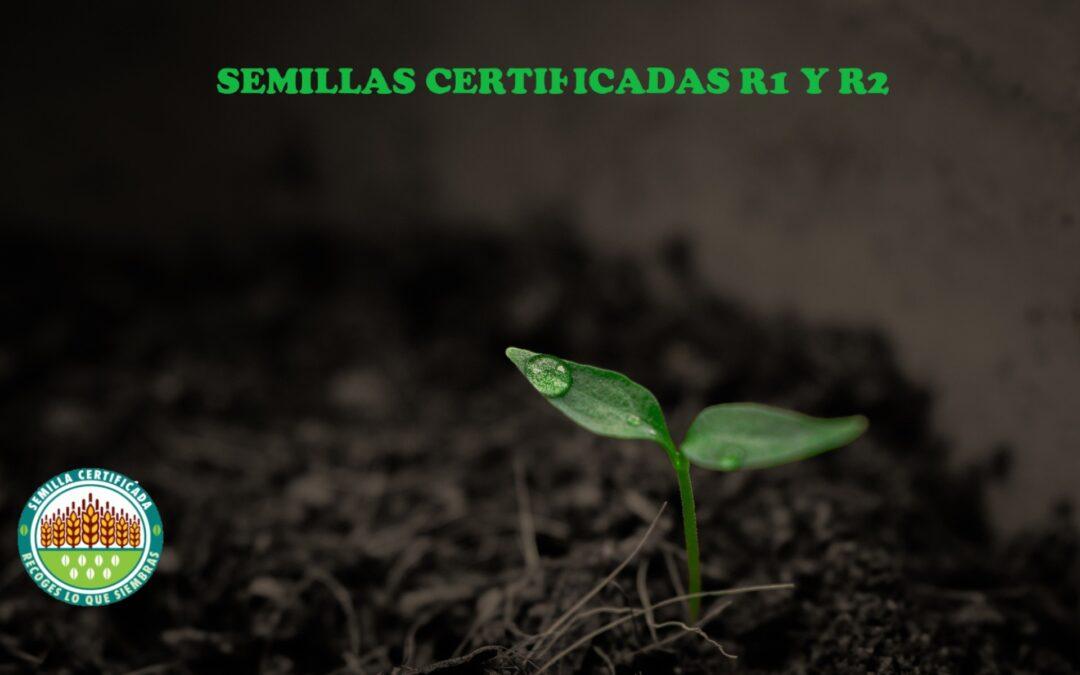 LAS SEMILLAS CERTIFICADAS LOGRAN RENDIMIENTOS SUPERIORES SEGÚN EL ENSAYO PARA COMBATIR EL CAMBIO CLIMÁTICO DESARROLLADO POR UPA BURGOS